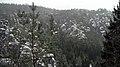 Bastei im Winter 11.JPG