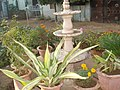 "Beautiful Fountain View at ""Muskaan"" A-9 Amaltas Colony,Gwalior - panoramio (8).jpg"