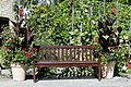Bench and canna potted plants Quex House Birchington Kent England.jpg