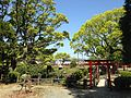 Benzaiten Shrine and iris pond in Kashii Shrine 2.JPG