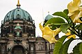 Berlin (36819781386).jpg