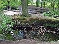 Berner Gutspark mit Deepenhorngraben (2).jpg