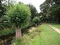 Beverley Brook - geograph.org.uk - 1453939.jpg