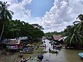 Bhimruli Floating Guava Market, Jhalokathi (2).jpg