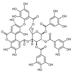 Bicornin