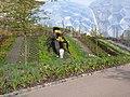Big Busy Bee - geograph.org.uk - 1138608.jpg