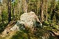 Björnlandet NP forest.jpg
