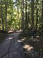 Blendon Woods Metro Park October 2018 10.jpg