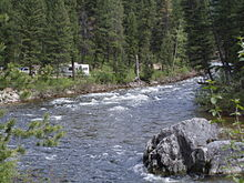 A photo of a river surrounded by coniferous trees
