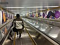 Bondi Junction Transport Interchange escalator.jpg