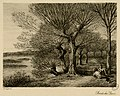 Bords du Gave - Fonds Ancely - B315556101 A LAFOND 3 020.jpg