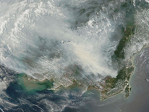 Mega Rice Project (Kalimantan) - Fires on Borneo in 2006. Fires in peat—thick layers of dead, but un-decayed vegetation—are extremely smoky and difficult to put out.