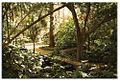 Botanico-Malaga-1.jpg