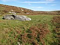 Boulder by the Plym - geograph.org.uk - 1513997.jpg