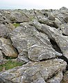 Boulder field on the Elidir Fach summit - geograph.org.uk - 192473.jpg