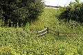Boundary fence below the M11 at Woodland Trust wood Theydon Bois Essex England.JPG
