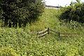 Boundary fence below the M11 at Woodland Trust wood Theydon Bois Essex England.JPG