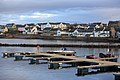 Bowmore harbor - panoramio.jpg