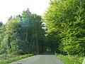 Braken-bei-Griemshorst-Harsefeld.jpg