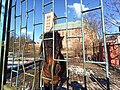 Braniewo zoo katedra.jpg