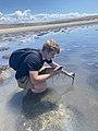 Bridger Bay science Antelope Island Utah.jpg