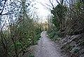 Bridleway, Babylon Down - geograph.org.uk - 2155919.jpg