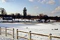 Brocas sous la neige 20.jpg