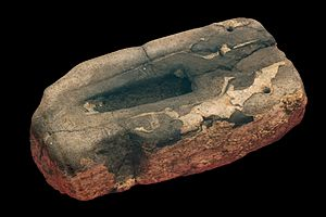 Molding (process) - Stone mold of the Bronze Age used to produce spear tips.