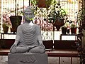 Buddha scenery 03.jpg