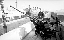 single barrelled gun with sentry behind large commercial ships in the background
