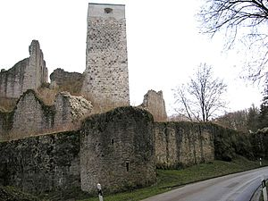 Wellheim Castle - Northwest view of the zwinger, palas and bergfried