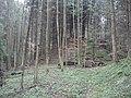 Burgstall Holenstein, Spitze des Burghügels, Blick nach SSE, fern.jpg
