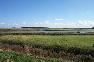 Burnham Overy - The fresh water meadows
