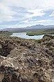 Butcher Jones Trail to Pinter's Point Loop, Tonto National Park, Saguaro Lake, Ft. McDowell, AZ - panoramio (47).jpg