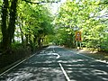 Buxton Road towards Macclesfield - geograph.org.uk - 2389827.jpg
