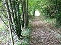 Byway towards Eastbury Farm - geograph.org.uk - 1028549.jpg