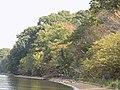 CA Fall Foliage (23663922028).jpg
