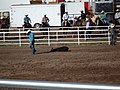 CFD Tie-down roping J.D. McCuistion No.1.jpg