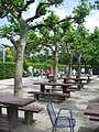 Cafe - Luisenpark - geo.hlipp.de - 2259.jpg