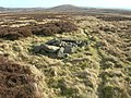 Cairn on Sting Law - geograph.org.uk - 341292.jpg