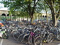 Cambridge Railway Station Bicycle Racks.jpg