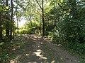 Camminando per la riserva Casalbeltrame 2.jpg