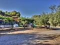 Camping Apollo Village - panoramio.jpg