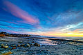 Cardiff State Beach.jpg