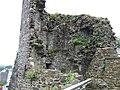 Carmarthen Castle - geograph.org.uk - 1188682.jpg