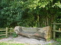 Carved Bench Seat - geograph.org.uk - 534362.jpg