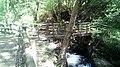 Cascata da Cabreia3.jpg