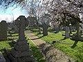 Cemetery, St Stephens - geograph.org.uk - 1193750.jpg