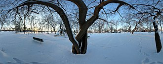 Oak Lawn, Illinois - Centennial Park, Winter 2006