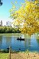 Central Park NY03.JPG